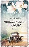 Mehr als nur ein Traum: Roman. von Elisabeth Büchle