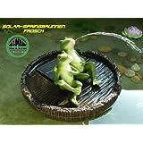 Accu drôles de Fontaine solaire Grenouilles île solaire la star pour piscine bassin ou une Expérience. avec fonction Accu Nouveau.