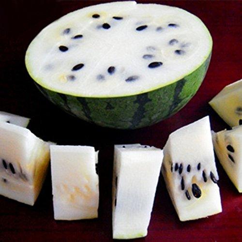 KINGDUO Egrow 50Pcs/Pack Anguria Semi Giardino Colorato Commestibile Verde Giallo Bianco Cocomero Semi-Bianco