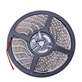 LED-Streifen,Jaminy 12V Wasserdichte LED Strip Light 5m 300leds FÜR Boot/Truck/Car/SUV/RV Weiß Lichterkette, Band, Streifen, LED Leiste, LED Lichtleiste, LED Bänder, Lichterkette LED