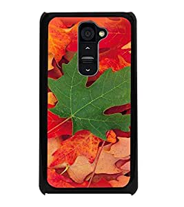 PrintDhaba Mapple Leaf D-4784 Back Case Cover for LG G2 (Multi-Coloured)