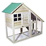 Hühnerstall Kleintierhaus Gehege mit 2 Etagen und Freilauf Gehege Nagerhaus