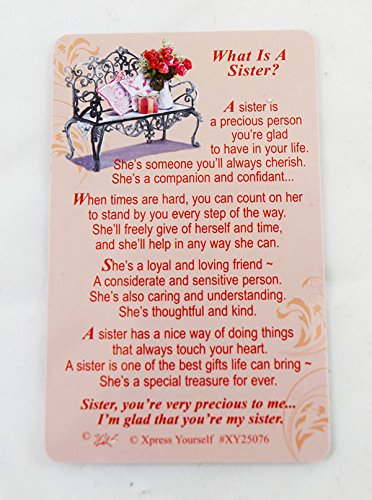 what-is-a-sister-keepsake-wallet-card-purse-sentimental-pink-love-gift-token