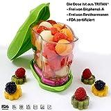 Salatbox unterwegs Snackdose Lunchdose Kühldose Obstdose Kinderdose Vesperdose mit Kühlakku und...