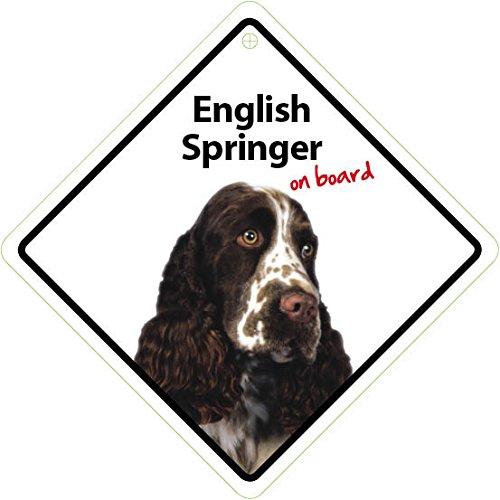 Magnet & Steel English Springer Spaniel on Board