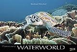 Waterworld 2018: Großer Foto-Wandkalender mit unterwasser-Bildern von Fischen. Edler schwarzer Hintergrund und Foliendeckblatt. PhotoArt Panorama Querformat: 58x39 cm.
