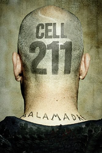 cell-211