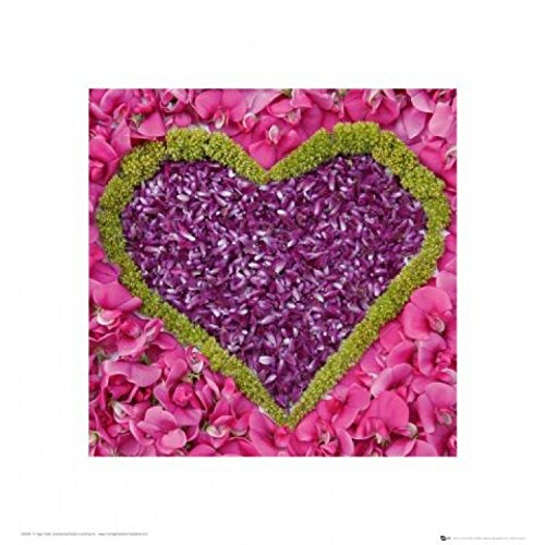 Corazones - Madalenes Flower Hearts, Purple On Pink