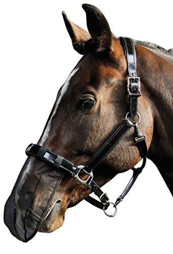 Reitsport Amesbichler Pferde Nasenfliegenschutz Fliegen Nüsternschutz Insektenmaulnetz schwarz