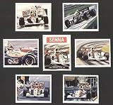 Ayrton Senna F1Rennfahrer Sammler Karten