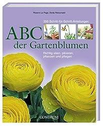 ABC der Gartenblumen