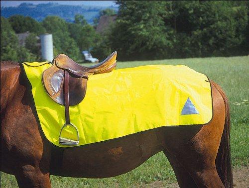 Amesbichler Reflektierende Pferdedecke | Pferdedecke reflektierend