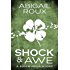 Shock & Awe (Sidewinder Book 1) (English Edition)