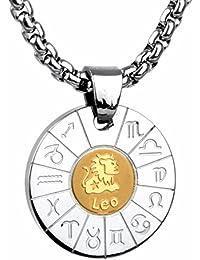 COPAUL Joyería Acero Inoxidable Nudo Celta Colgante Zodiaco Signo,incluye 60cm cadena