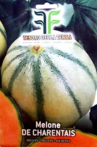 120 Aprox- Semillas de Melon De Charentais - Cucumis Melo en paquete original Made in Italy - Meloni