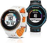 Garmin Forerunner 620 GPS-Laufuhr (Touchscreen, Farbdisplay, frei konfigurierbare Datenfelder) - 15