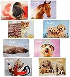 2 Stück _ Platzdeckchen / Mal & Bastel & Knet - Unterlage -  Haustiere - Tiere  - incl. Name - 43 cm * 30 cm - Eßunterlage -  Rachael Hale  / Platzset - T..