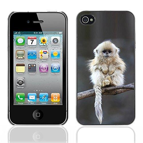 Graphic4You Lustig Niedlich Affe Tier Design Harte Hülle Case Tasche Schutzhülle für Apple iPhone 4 und 4S Design #1