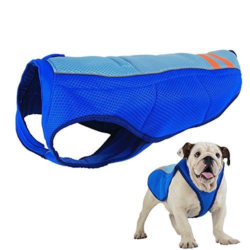 Petilleur Chaleco de Refrigeración para Perros Chaleco Refrescante Perro Mediano y Grande (L, Azul)