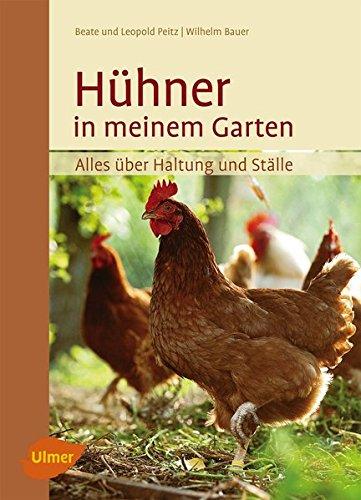 *Hühner in meinem Garten: Alles über Haltung und Ställe*