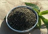 Piantaggine (Plantago lanceolata) 100 g