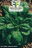 640 aprox - Spinacio Matador Samen - Spinacea Oleracea In Originalverpackung Hergestellt in Italien - Spinat