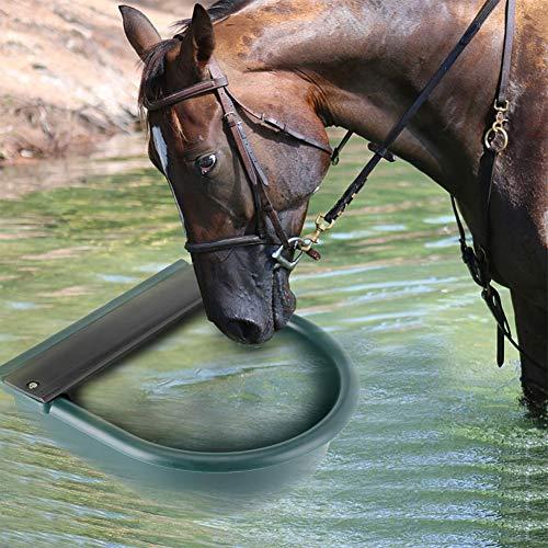 GOTOTOP Abbeveratoio Automatico per Cani,Cavalli, Pecore, capre, bovini, Ciotola in Acciaio Inox con Scarico,4L (Verde)