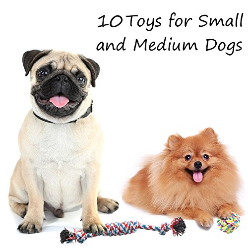 ONBET-10pcs-Pet-Dog-Toys-Durable-Pet-Rope-Chew-Toy-Set-Non-toxic-Material-Vibrant-Colors-Attractive-Design-for-Dogs