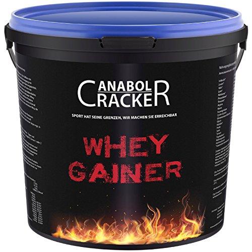 Whey Gainer Protein 100{485ca6ae6ea396b452a7d6e250c2b272f708e7c4b90f662f01579d784fcf5faf} rein, Hardgainer, 3000g Eimer, Vitamine, Aminosäuren Eiweißpulver (3Kg Erdbeere)