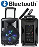 CASSA AMPLIFICATA 450W 10' BLUETOOTH + BATTERIA + MICROFONO WIRELESS + USB