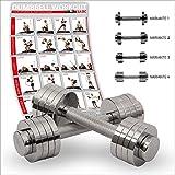 POWRX Chrom Kurzhantel | Hantel verstellbar | 2x5kg oder 2x10kg | Gewichte-Set Paar verchromt und gerändelt | Ideal für Fitness Kraft-Training (2x 10 kg)