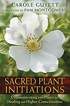 Sacred Plant Initiations: Communicating with Plants for Healing and Higher Consciousness by [Guyett, Carole]