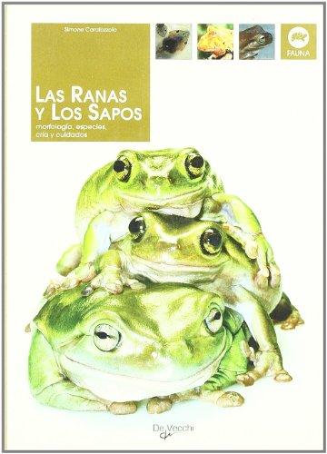 Las Ranas y Los Sapos por Simone Caratozzolo