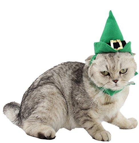 Haustier Junge Mädchen Hund Katze Elfen Hut und Weihnachten festlich Kostüm Kleid Kostüm Outfit (Outfit Elfen Mädchen)