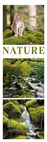 Nature 2019, Wandkalender im Hochformat (33x100 cm) - Inspirationskalender / Naturkalender / Triplets mit Monatskalendarium