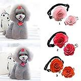 Baoblaze 1x Blumen geformt Hundehaarspange mit 1x Blumen geformt Hundehalsband, Elegante Accessoires für Hunde - Rot
