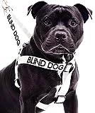 Blinden Hund Weiß Farbe Coded Nylon L-XL Non-Pull-Hundegeschirr (No / Begrenzte Sight) verhindert, dass Unfälle, die durch Warn Sonstige Ihren Hund im Voraus