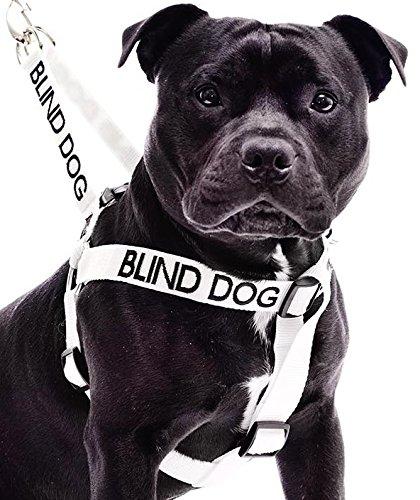 Blinden Hund Weiß Farbe Coded Nylon L-XL Non-Pull-Hundegeschirr (No / Begrenzte Sight) verhindert,...