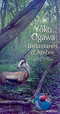 Instantanés d'Ambre par Yôko Ogawa