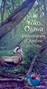 Instantanés d'Ambre par Ogawa