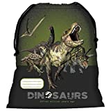 Les Dinosaures sac piscine chaussures école plage nouveauté Dinosaurs