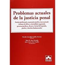 PROBLEMAS ACTUALES DE LA JUSTICIA PENAL (MONOGRAFIAS)