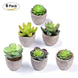 YQing Artificial Succulent Plants - Set of 6 Fake Succulent Planter Faux Cacti Plants, Small Succulent Plants with Gray Pots for Home Decor