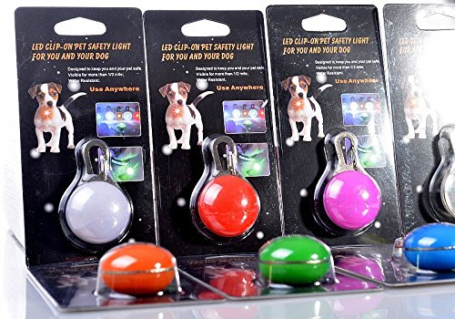 Dog Cat Pet Flash LED Light Safety Collar Tag Waterproof Colorful Safety Lights of Dogs and Cats for Night Walking 2