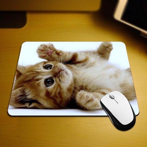 Familienkalender süßes Katzenbaby Katze auf dem Rücken Mauspad Anti-Rutsch, Wasserfest 220x180 Veredeln Sie Ihren Schreibtisch mit diesem eleganten Mauspad