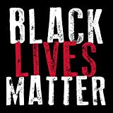 SQUARE Black Lives Matter Sticker (civil rights for african americans) by American Vinyl