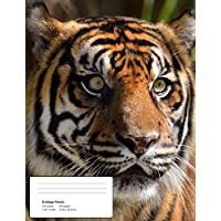 Help!: Tiger - Climate Crisis