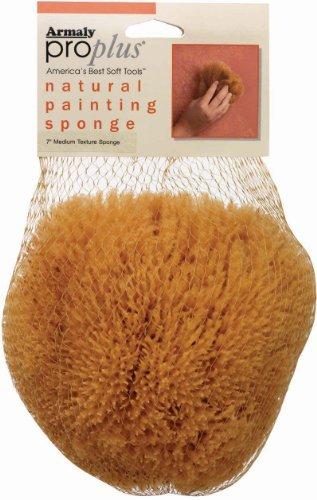 proplus-natural-painting-sponge-medium-texture-small