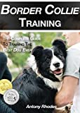 Border Collie Training: The Complete Guide To Training the Best Dog Ever