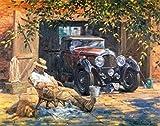 OBELLA Malen nach Zahlen Kits    Yard Auto, schlafen Alten Mann mit Hund 50 x 40 cm    Malen nach Zahlen, DIGITAL Ölgemälde (Mit Rahmen)